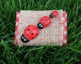Ladybug Favor Chocolates, Birthday Party Favor, Baby Shower Favor, Picnic Treat
