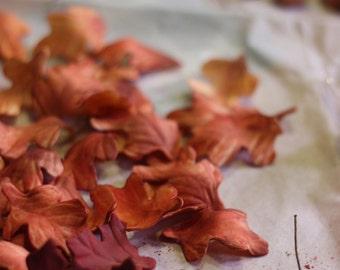 Assorted Gumpaste Autumn Leaves and Acorns Cupcake/ Cake Topper-- one dozen