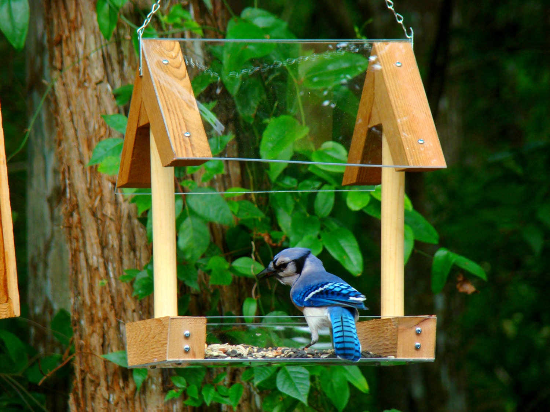 Hanging Wood Bird Feeder Platform Style By