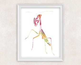 Mantis Insect Watercolor Print - Wall Art - Home Decor 8x10 PRINT - Item #702B