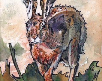 Spring Hare - Print of Watercolor and Ink Painting of Rabbit in Grass - Illustration Reprodcution by Jen Tracy