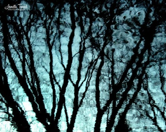 Tree Reflection Picture, Rain Reflection Picture, Rain Art, Rain Print, Rain Reflection Print, Rain Trees Photo, Rain Photo, Rain Picture