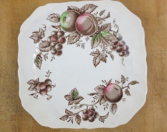 Johnson Bros. Harvest Time Square Salad Plate / Brown and Mutli-Color / Ironstone Dinnerware