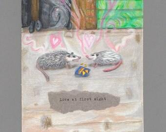 Possum love colored pencil drawing Doritos meeting