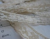 Vintage Scalloped Edge Tan Lace- 1 2/3 Yards
