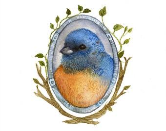 Bluebird Portrait - Archival Print of original watercolor - nursery art, bird lover