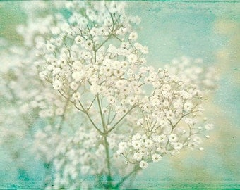 Baby's Breath Flower Print,  Flower Photography, Floral Art Print, White Turquoise Wall Decor, Cottage Chic. Bedroom Art