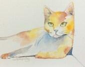 Orange cat painting original ACEO calico yellow