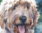 GOLDENDOODLE Dog Watercolor Signed Fine Art Print by Artist DJ Rogers