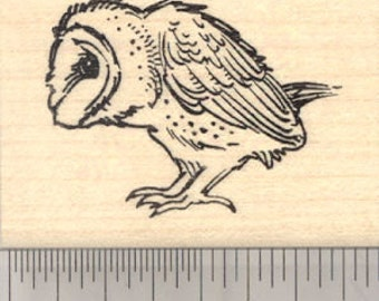 Barn Owl Rubber Stamp, Bird Profile View E25608 Wood Mounted