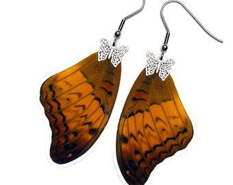 Real Butterfly Wing Earrings (Vindula Forewing - E039)