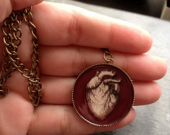 Anatomical Heart Pendant Necklace,Mother's Day Gift Idea