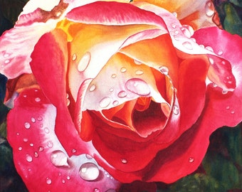 Red Yellow Rose Art Watercolor Painting Print by Cathy Hillegas, floral watercolor rose print, 16x19, raindrops, gifts for mom, mothers day