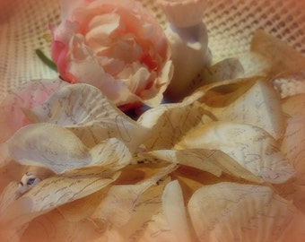 300 Antique Inspired Silk Rose Petals with French Script Stamping - Perfect for An Vintage Wedding