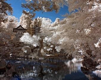 Japanese Garden 1 - Infrared Photograph - 8 x 12