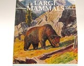 1986 Coloring Book, Large Mammals, Nature Stories for Children, Volume 2, Story Book, DIY, 40 Pages, 19 Stories, Educatonal, Creative Play
