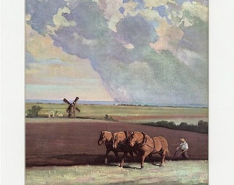 Vintage Suffolk Punch Draft Horse Illustration from 1951 Album of Horses
