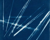 Cyanotype Pick up Sticks