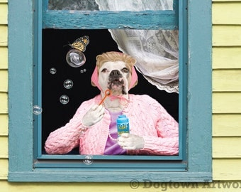Wonder Bubbles, large original photograph of a white boxer dog in clothes blowing a bubble for a monarch butterfly