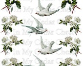 Instant Digital Download Vintage Doves Birds White Blossoms Flowers Transparent PNG and Instructions to make Waterslide Decals Bonus! ECS