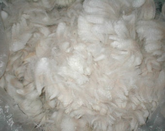 100% White Alpaca Seconds, 2 lbs, FREE SHIPPING