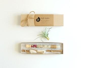 Bath Salt Favors in Test Tubes, Organic, All Natural, Floral, Set of 10, Flower Wedding Favor, Bridesmaid, Hotel, Spa, Eco, Luxury Gift Set