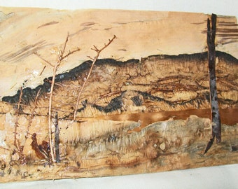 Vintage Australia Bark Art - Miniature Landscapes - Native Seaweed & Bark Collage