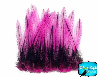 Fuchsia Laced Pointy Feathers, 10 Pieces - HOT PINK Laced Medium Rooster Cape Feathers : 3345