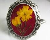 Real Flower Bracelet, Adjustable, Pressed Flower Jewelry, Silver Plated Brass, Resin (1273)