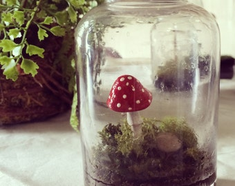 Hand Stitched Felt Toadstool Red & White Polka Dotted Mushroom in Vintage Jar Terrarium with Grass // Handmade Gift Holidays Green Thumb