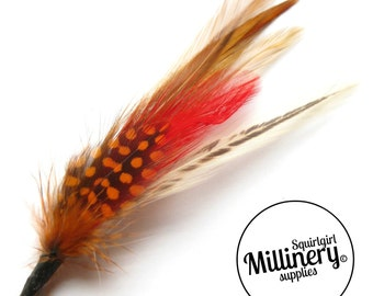 Men's Natural Colour Hat Feathers Millinery Mount (Hackle and Spotted Guinea Feathers)