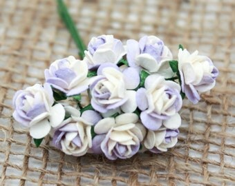 Enchanted  Passion  Series  - Miniature Roses-Shabby Lavender