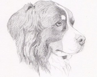 Bernese Mountain Dog/ Swiss Mountain Dog Signed Personalized Original Pencil Drawing Double Matted Print -Free Shipping- Desert Impressions