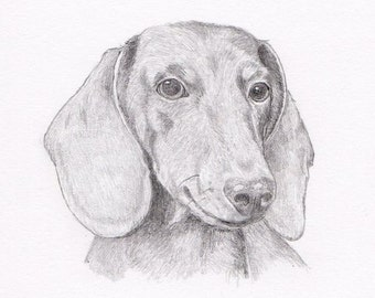 Dachshund Doxie Signed Personalized Original Pencil Drawing Double Matted Print -Free Shipping- Desert Impressions