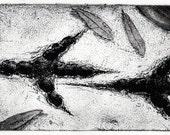 Raven artwork , Raven, crow,  etching 5 inch x 10 inch 2014