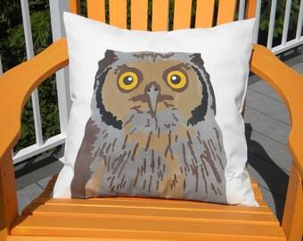"Owl outdoor pillow 20"" cushion birding parliament feathers ornithology fowl talons Northern Hawk Owl Crabby Chris Original"