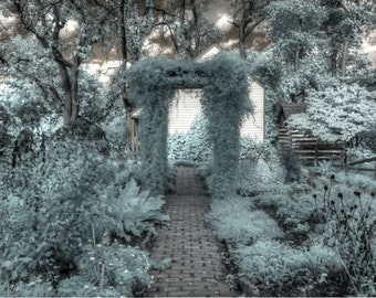 Home decor infrared photography The Secret Garden, nature photography, zen photography, home decor photography, feng shui photography