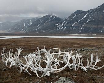 I Believe....Alaskan Fine Art Photography