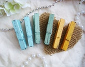 Maddy Collection - Sky Sage & Tiger Lily (Blue Green Orange) with Raven Black Distressed Mini 2 Inch Clothespins Variety 6 Pack