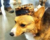Doggy Pill Box Hat leopard print