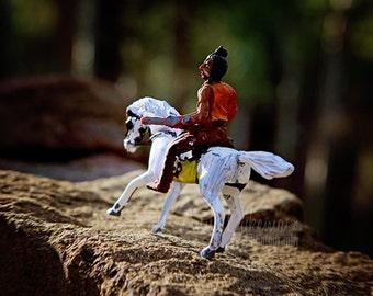 Kids Wall Art - Brave - Vintage Toy Photography, white horse, native american, miniature, brown, green, orange, pumpkin, autumn