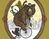 One Man Bear Band