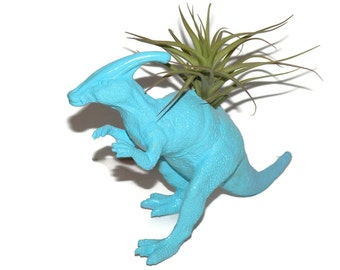 Dinosaur planter with air plant included. Billy the Parasaurolophus dinosaur in bright blue.