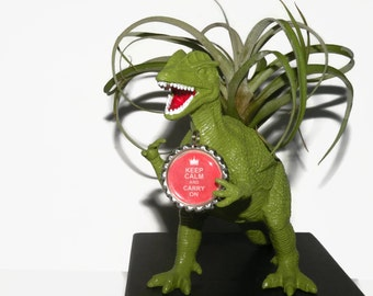 Danny the Dilophosaurus with custom message and air plant. Fun boyfriend gift.