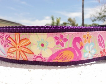 "Sale Large Dog Collar 1.5"" Martingale or Quick Release buckle Flamingo and Pelican - sizing & info in description section"