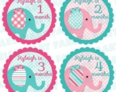 Personalized month baby stickers Baby Month Stickers Baby Girl Month Stickers Monthly Photo Stickers Monthly Milestone Stickers