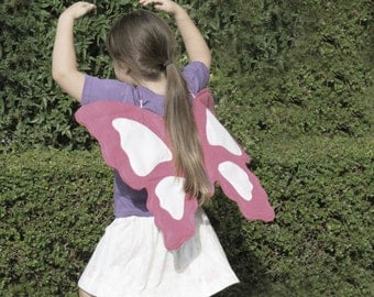 Butterfly T-shirt and wings: 2-3 years & 4-5 years