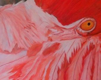 "Bird Flamingo animal wildlife original art oil painting on 24"" x 24"" x 2.5"" canvas by Sandra Cutrer Fine Art"
