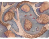 Antlers and Shells (8x10 Watercolor Giclée Print)