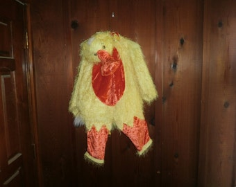 Halloween Costume, Duck, child outfit, size 24 months